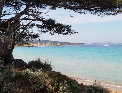 Le port de Porquerolles touché par la pollution aux hydrocarbures